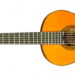 ラミレスという楽器