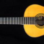 パウリーノベルナベという楽器